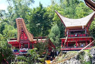 Toraja Culture Tour Trekking