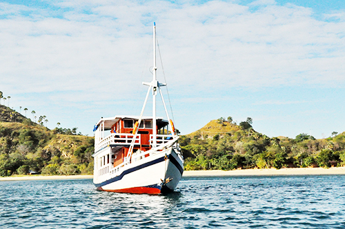Cruises To Komodo Island