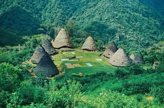 Wae Rebo Traditional Village Manggarai