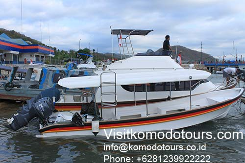 Komodo tours Indonesia